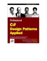Professional C# Design Pattern Applied potx