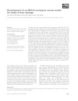 Báo cáo khoa học: Development of an HSV-tk transgenic mouse model for study of liver damage pptx