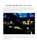 Các bảo tàng nên đến ở New York docx