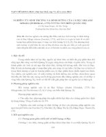 NGHIÊN CỨU SINH TRƯỞNG VÀ DINH DƯỠNG CỦA CÁ ĐỤC SILLAGO SIHAMA (FORSSKAL, 1775) Ở VÙNG VEN BIỂN QUẢNG TRỊ potx