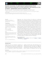 Báo cáo khoa học: Crystal structure of salt-tolerant glutaminase from Micrococcus luteus K-3 in the presence and absence of its product L-glutamate and its activator Tris pdf