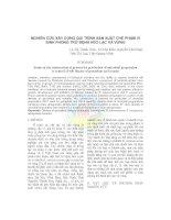 Báo cáo: Nghiên cứu xây dựng qui trình sản xuất chế phẩm vi sinh phòng trừ bệnh héo lạc và vừng ppt