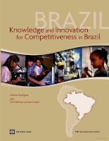 knowledge and innovation for competitiveness in brazil ppt