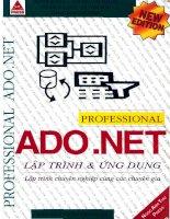 Professional ADO.NET lập trình và ứng dụng doc