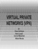 VIRTUAL PRIVATE NETWORKS (VPN) docx