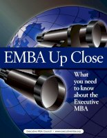 EMBA UP CLOSE - WHAT YOU NEED TO KNOW ABOUT THE EXECUTIVE MBA docx