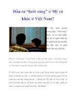 """Đầu tư """"lướt sóng"""" ở Mỹ có khác ở Việt Nam? doc"""