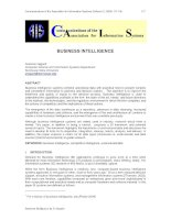 Communications of the Association for Information Systems: BUSINESS INTELLIGENCE pot