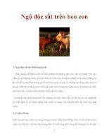 Ngộ độc sắt trên heo con pdf