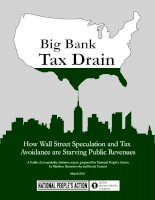 Big Bank Tax Drain - How Wall Street Speculation and Tax Avoidance are Starving Public Revenues pot