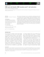 Báo cáo khoa học: ERK and cell death: ERK location and T cell selection pdf