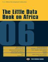 Little Data Book on Africa 2006 (African Development Indicators) pdf