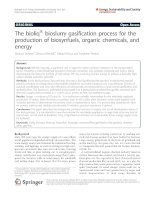 The bioliq® bioslurry gasification process for the production of biosynfuels, organic chemicals, and energy pdf