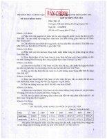Đề thi học sinh giỏi quốc gia năm 2010 môn địa lý 12 pptx