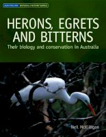 HERONS, EGRETS AND BITTERNS Their biology and conservation in Australia docx