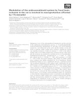 Báo cáo khoa học: Modulation of the endocannabinoid system by focal brain ischemia in the rat is involved in neuroprotection afforded by 17b-estradiol pdf