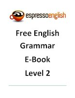 Free English Grammar E-Book Level 2 doc