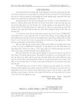 CAO HOANG THUY LINH-BAO CAO TTTN(da sua lan 2) BAN SUA SANG CONG TY TUNG DAT pptx