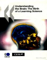 understanding the brain the birth of a learning science pptx