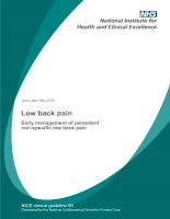 Low back pain - Early management of persistent non-specific low back pain pptx