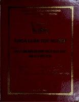 đại lý tàu biển và phát triển hoạt động đại lý ở việt nam