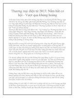 Thương mại điện tử 2013: Nắm bắt cơ hội - Vượt qua khủng hoảng pptx