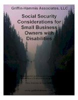 Griffin-Hammis Associates, LLC - Social Security Considerations for Small Business Owners with Disabilities doc