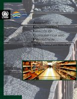 ASSESSING THE ENVIRONMENTAL IMPACTS OF CONSUMPTION AND PRODUCTION: PRIORITY PRODUCTS AND MATERIALS pdf