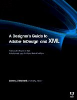 A Designer''''s Guide to Adobe InDesign and XML: Harness the Power of XML to Automate your Print and Web Workflows pptx