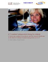ICT enabled independent living for elderly: A status-quo analysis on products and the research landscape in the field of Ambient Assisted Living (AAL) in EU-27 doc