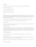 Luyện tập về liên kết trong văn bản (tiếp theo) - văn mẫu
