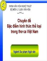 Đặc điểm hình thức thể loại trong thơ ca Việt Nam ppt