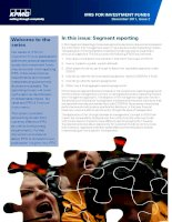 IN THIS ISSUE: SEGMENT REPORTING potx