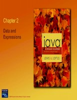 Chapter 2: Data and Expressions pptx