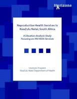 A Situation Analysis Study Focusing on HIV/AIDS Services pptx