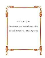 TIỂU LUẬN: Báo cáo thực tập tại cửa hàng xăng dầu số 4 Đại Từ –Thái Nguyên potx