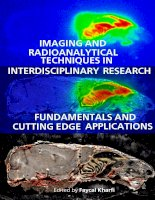 IMAGING AND RADIOANALYTICAL TECHNIQUES IN INTERDISCIPLINARY RESEARCH -FUNDAMENTALS AND CUTTING EDGE APPLICATIONS potx