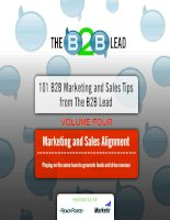 101 B2B Marketing and Sales Tips from The B2B Lead docx