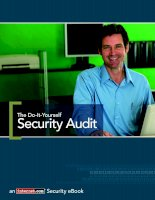 The Do-It-Yourself Security Audit pdf