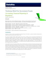TECHNICAL BRIEF FOR INVESTMENT FUNDS: ACCOUNTING, FINANCIAL REPORTING & REGULATORY ( VOLUME 5) potx