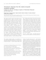 Báo cáo khoa học: Thioredoxin reductase from the malaria mosquito Anopheles gambiae Comparisons with the orthologous enzymes of Plasmodium falciparum and the human host pdf