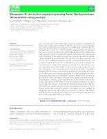 Báo cáo khoa học: Shewasin A, an active pepsin homolog from the bacterium Shewanella amazonensis pptx