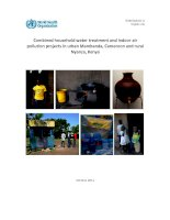 Combinedhouseholdwatertreatmentandindoorair pollutionprojectsinurbanMambanda,Cameroonandrural Nyanza,Kenya ppt