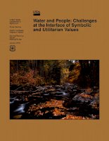 water and people challenges at the interface of symbolic and utilitarian values pot