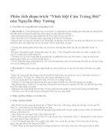 """Phân tích đoạn trích """"Vĩnh biệt Cửu Trùng Đài"""" của Nguyễn Huy Tưởng"""