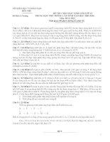 Đề thi HSG tỉnh Bến Tre lớp 12 năm 2010 môn Hóa học pot