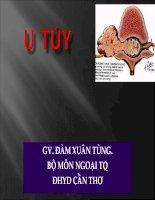 U tủy pdf