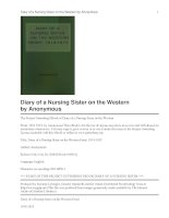 Diary of a Nursing Sister on the Western Front, 1914-1915 pptx