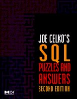 JOE CELKO'S SQL PUZZLES & ANSWERS Second Edition ppt