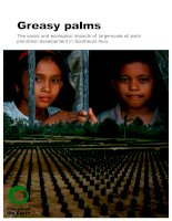 Greasy palms - The social and ecological impacts of large-scale oil palm plantation development in Southeast Asia docx